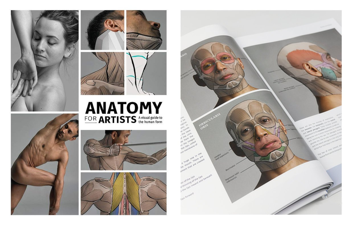 Anatomy for Artists the book